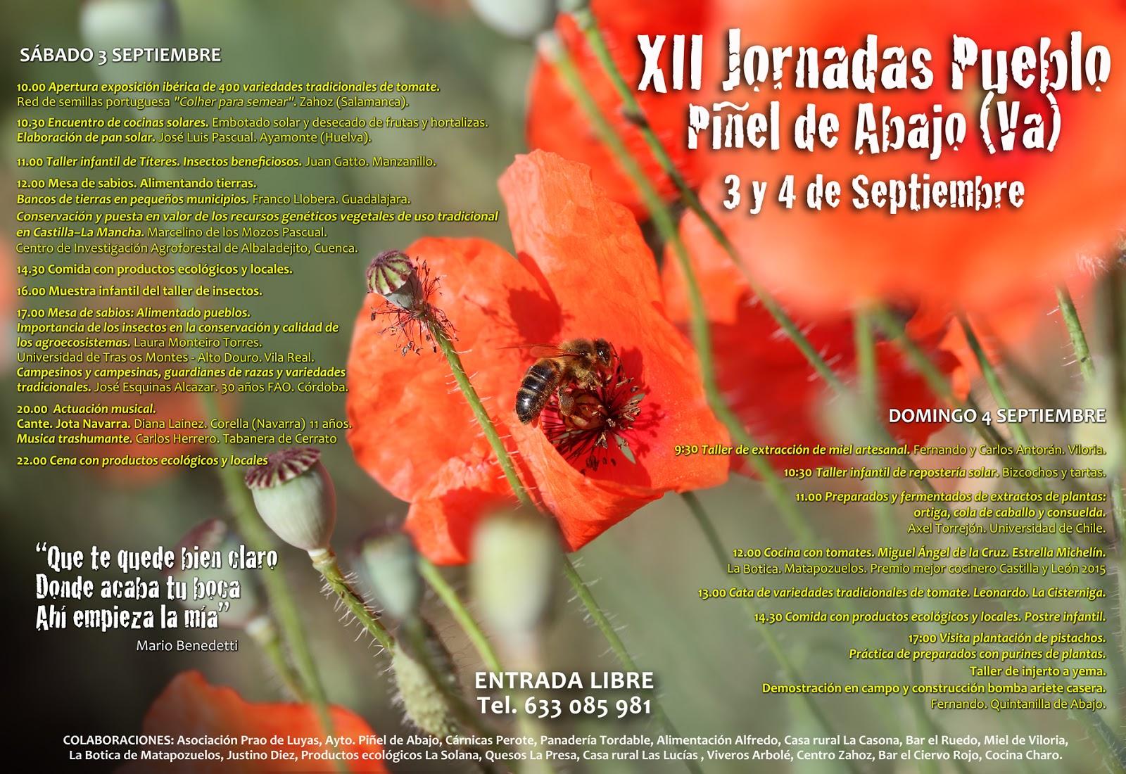 XII Jornadas Pueblo